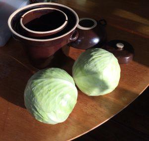 zuurkoolpot met gewicht en waterslot